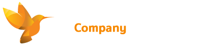 Small Company Accounts